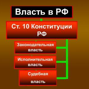 Органы власти Барсуков