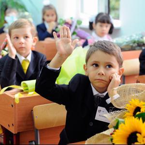 Школы Барсуков