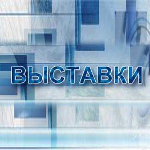 Выставки Барсуков